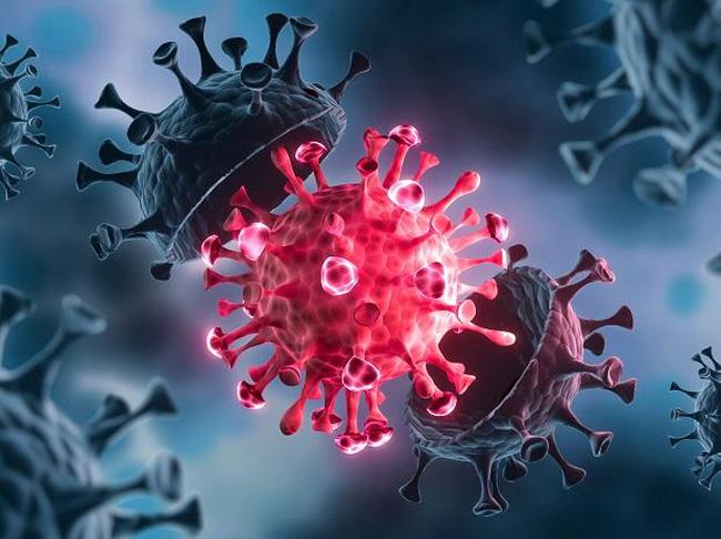 SARS-CoV-2 càng có nhiều cơ hội gây nhiễm trùng ở những người chưa được chủng ngừa, thì cơ hội xuất hiện của các VOC mới càng cao.
